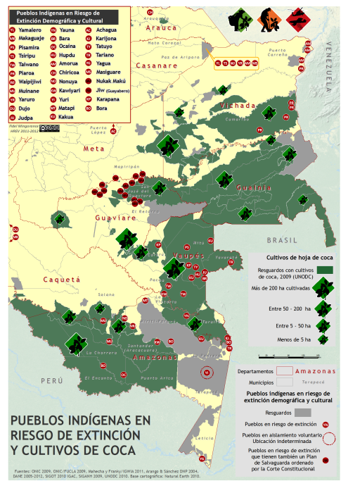 mapa de pueblos indígenas en riesgo de extinción y cultivos de coca en 2009