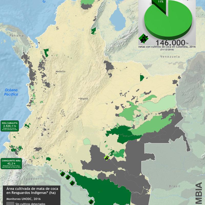 Resguardos-indigenas-y-cultivos-de-coca-2016